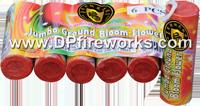 Fireworks - Spinners - Jumbo Ground Bloom Flower