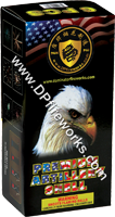 Fireworks - Reloadable Artillery Shells/Mortars Fireworks For Sale- Relodable Kits contain a mortar tube and several shells that are loaded and fired one at a time. - Dominator Black Box Artillery Shells