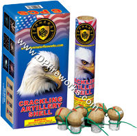 Fireworks - Reloadable Artillery Shells/Mortars Fireworks For Sale- Relodable Kits contain a mortar tube and several shells that are loaded and fired one at a time. - Dominator - CRACKING ARTILLERY SHELL